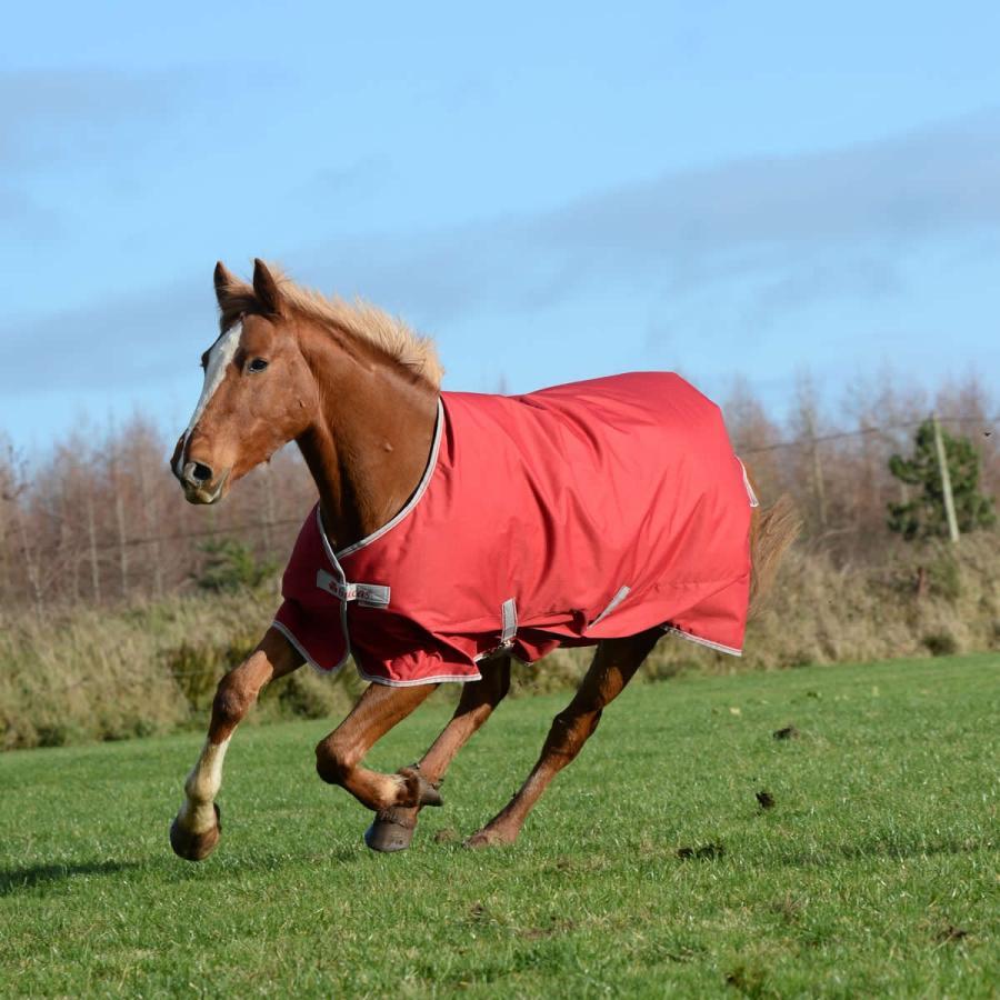 【国内正規品】 乗馬用品 bucas 送料無料 bucas 乗馬用品 フリーダム ステーブル 馬着 馬着 150g レッド 乗馬 馬具, フジゴルフ:89001255 --- airmodconsu.dominiotemporario.com
