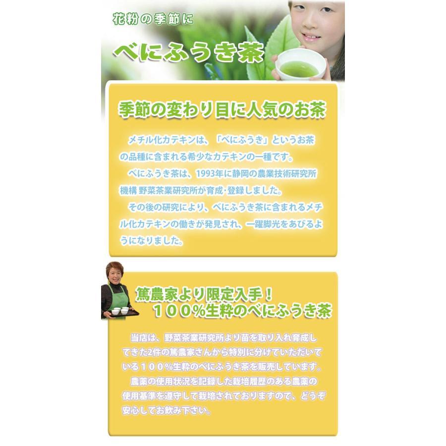 茶和家 木村園 べにふうき茶 ティーバッグ 1.5g x 100包 送料無料 jpanese-tea 03