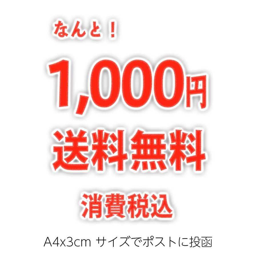 茶和家 木村園 べにふうき茶 ティーバッグ 1.5g x 100包 送料無料 jpanese-tea 05