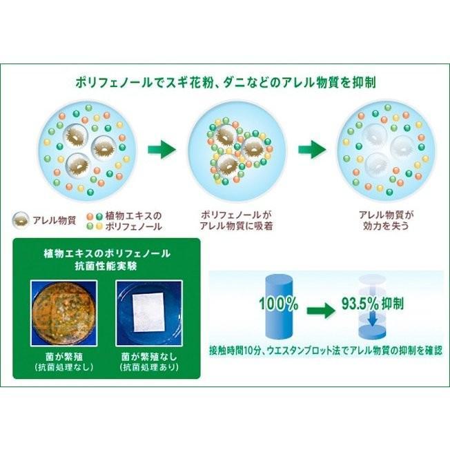 エアコンフィルター アウディ ベントレー A4 A5 Q5 Q7 S4 S5 ベンテイガ FP31003 ウイルス 抗菌|jpitshop|02
