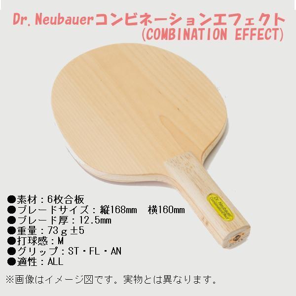 ジュウイック 卓球ラケット Dr.ノイバウア開発 コンビーネーションエフェクト AN 2288C <2019>