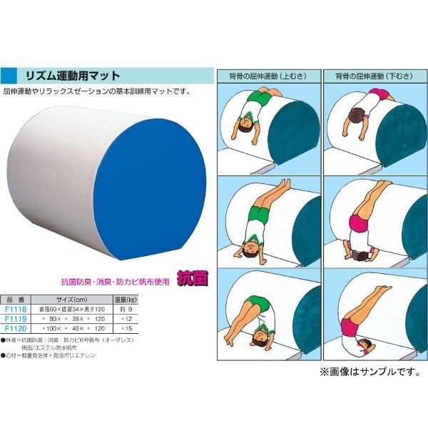 フラップ 学校 体育 体操マット リズム運動用マット 直径80×底部39×長さ120cm 1119 <2019NP>