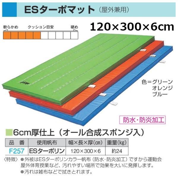 フラップ 学校 体育 体操マット ESターポマット(屋外兼用) ESターポリン 120×300×6cm 257 <2019NP>