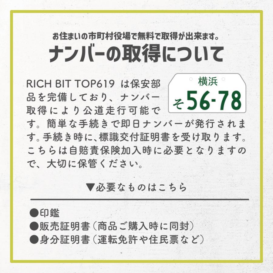 RICHBIT TOP619 SmarteBike  近未来型小型EV 電動自転車 電動バイク 電動スクーター 原付 折り畳み 公道可 在庫即納|jpstars|15