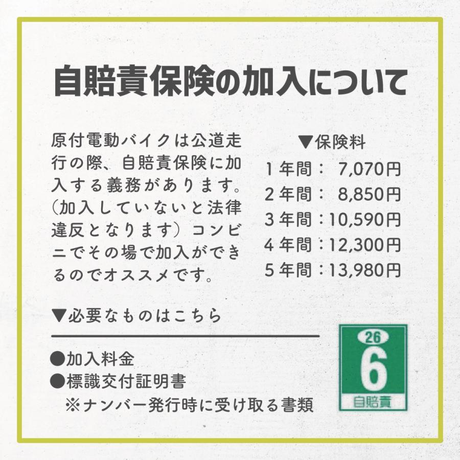 RICHBIT TOP619 SmarteBike  近未来型小型EV 電動自転車 電動バイク 電動スクーター 原付 折り畳み 公道可 在庫即納|jpstars|16