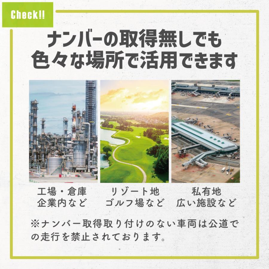 RICHBIT TOP619 SmarteBike  近未来型小型EV 電動自転車 電動バイク 電動スクーター 原付 折り畳み 公道可 在庫即納|jpstars|17