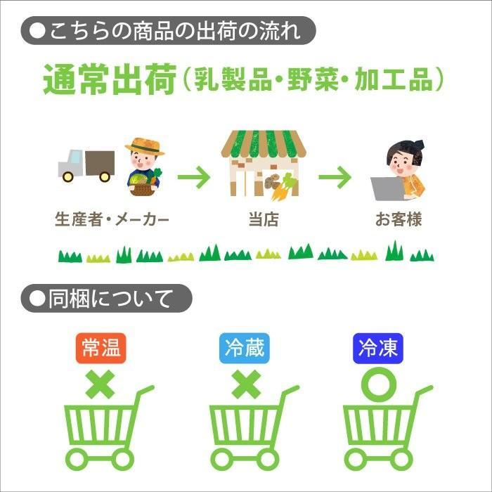 農家の甘酒スムージー プレーン120g 5個入り|jshop-web|03