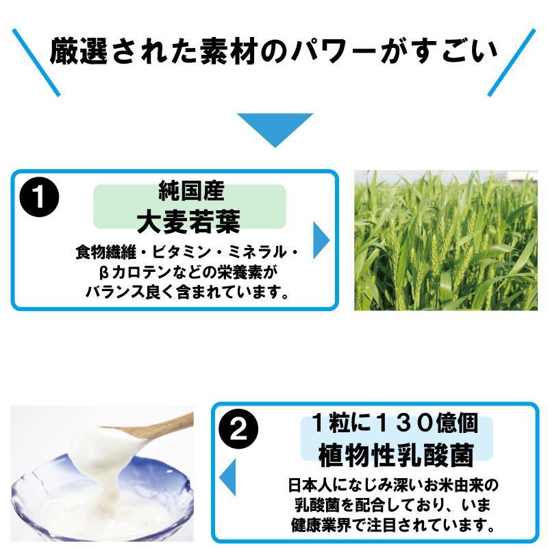 青汁 乳酸菌 130億超 国産 大麦若葉 モリンガ たもぎ茸 食物繊維 健康 ダイエット 青汁カプセル 送料無料 jun-global 03
