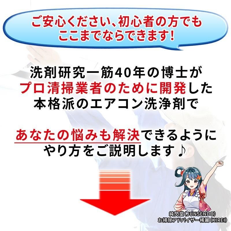 Air<Reseter(エアリセッター) エアコン洗浄剤 1000g 超強力 業務用 高濃度 油脂分解型アルカリ洗浄剤 AIG-R1000|junsendo|05