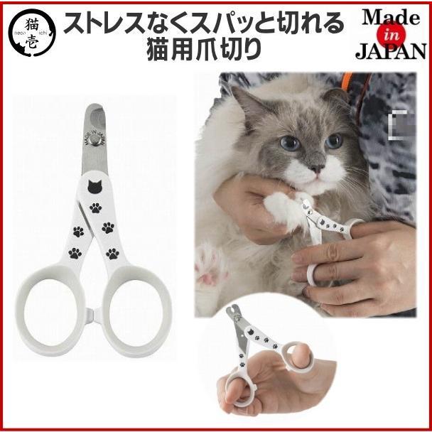 爪 切り の 猫
