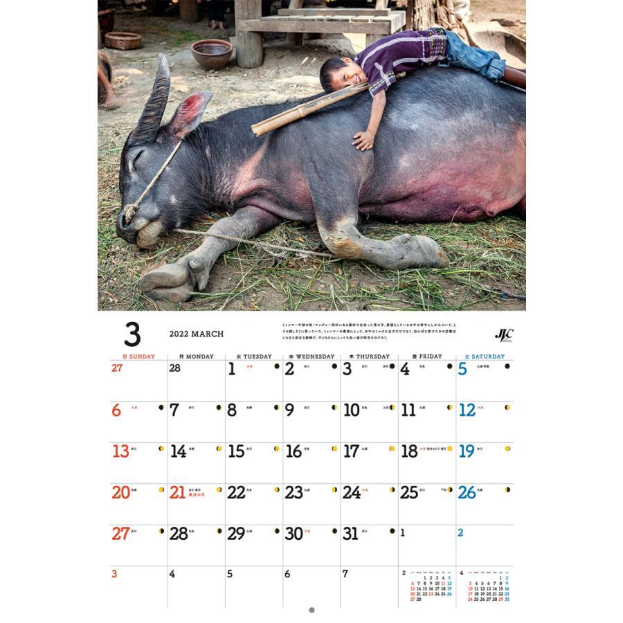 国際協力カレンダー2022(壁掛け)※1〜9部のご注文はこちらから|jvc|04