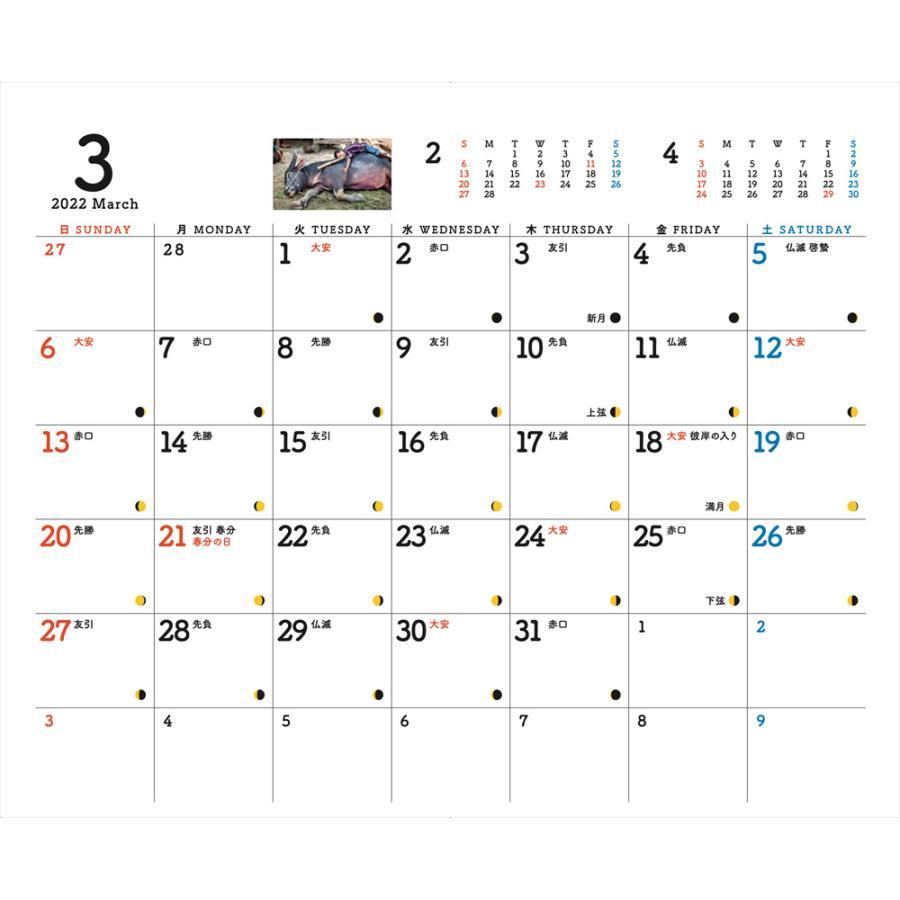 JVC国際協力カレンダー2022(卓上)※1〜50部のご注文はこちらから|jvc|16
