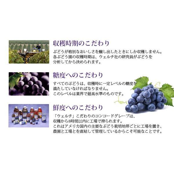 ジュース ギフト ウェルチ 100%果汁ギフト W10 210439042 のし 包装 メッセージカード 無料 jyoei 05