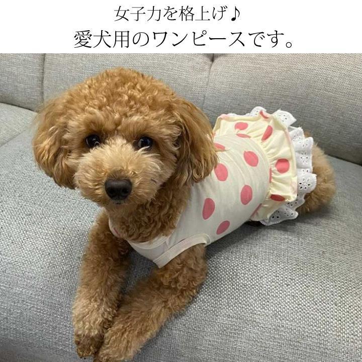犬 服 犬服 犬の服 おしゃれトイプードル チワワ タンクトップ ワンピース フリル ドット柄 レース ドッグウェア 送料無料|k-city|02