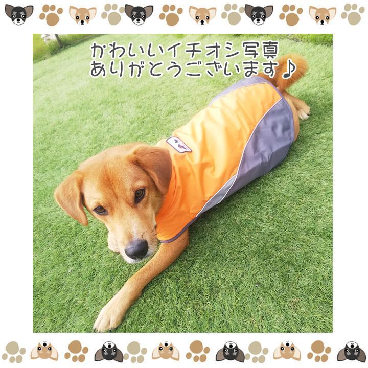着せやすい犬用レインコート 犬 服 犬服 犬の服  トイプードル チワワ 着せやすい レインコート 雨 ドッグウェア カッパ マジックテープ 雨具 お出かけ 送料無料|k-city|13