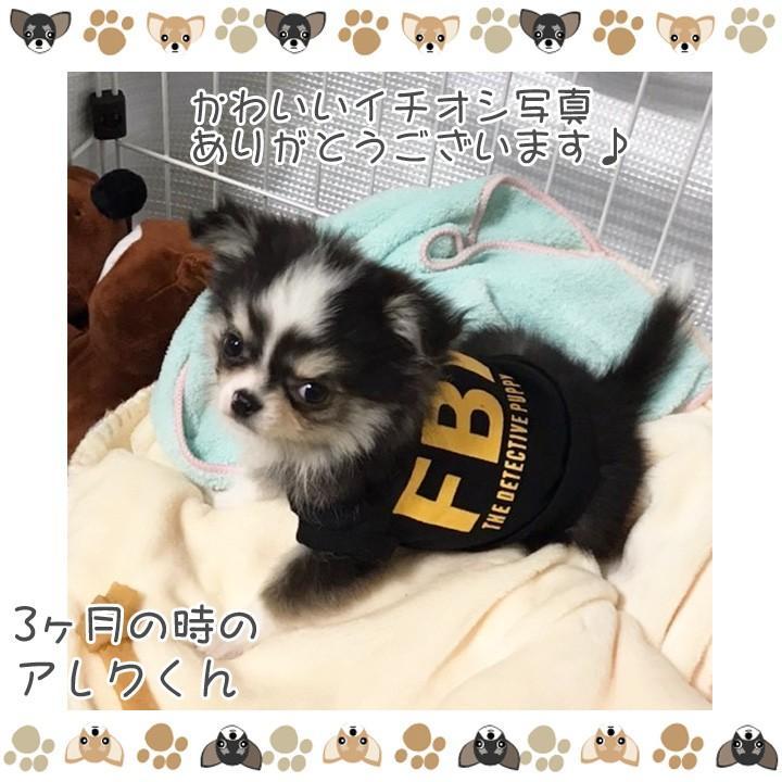 犬 服 犬服 犬の服 おしゃれ トイプードル チワワ ドッグウェア タンクトップ FBI 送料無料|k-city|10