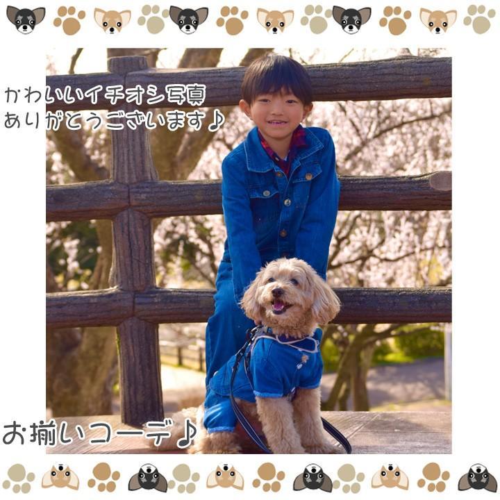犬 服 犬服 犬の服 おしゃれ トイプードル チワワ ドッグウェア つなぎ オーバーオール カバーオール ロンパース デニム 送料無料|k-city|12