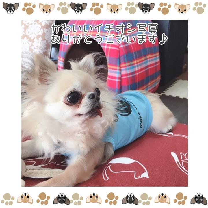 犬 服 犬服 犬の服 おしゃれ トイプードル チワワ タンクトップ 足跡柄 ドッグウェア|k-city|12
