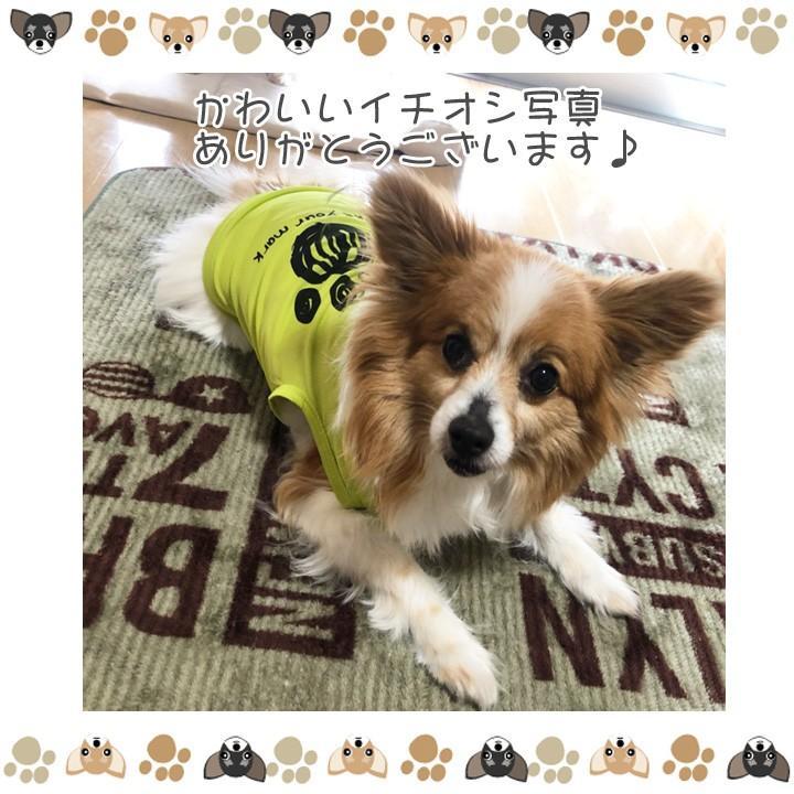 犬 服 犬服 犬の服 おしゃれ トイプードル チワワ タンクトップ 足跡柄 ドッグウェア|k-city|14