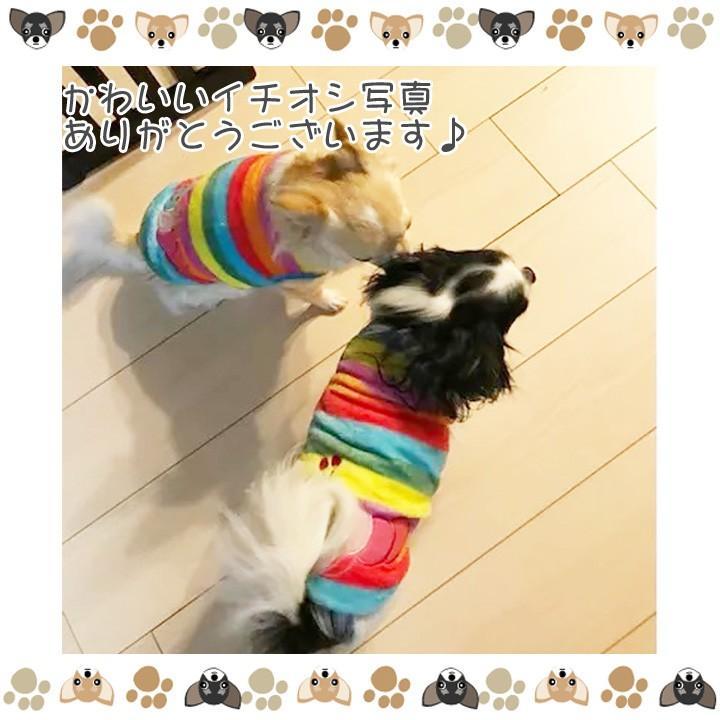 犬 服 犬服 犬の服 おしゃれ トイプードル チワワ タンクトップ カラフル ドッグウェア|k-city|13