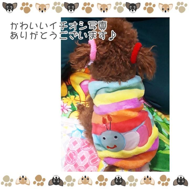 犬 服 犬服 犬の服 おしゃれ トイプードル チワワ タンクトップ カラフル ドッグウェア|k-city|07