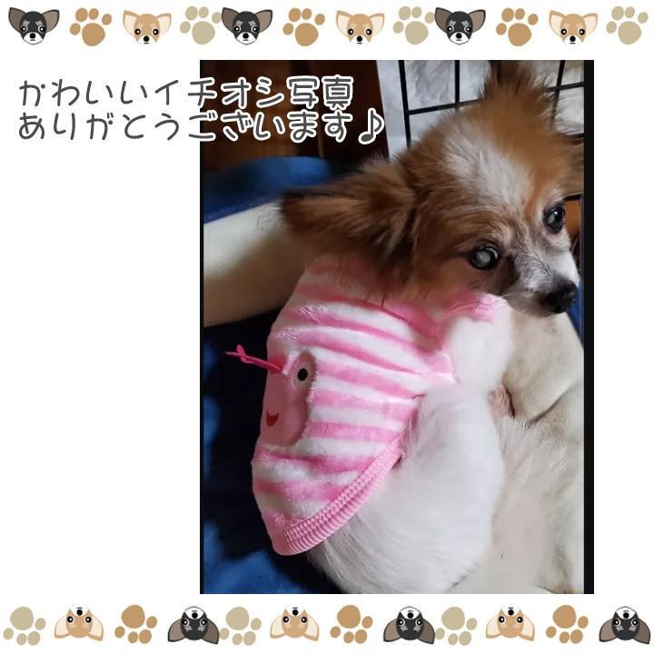 犬 服 犬服 犬の服 おしゃれ トイプードル チワワ タンクトップ カラフル ドッグウェア|k-city|09