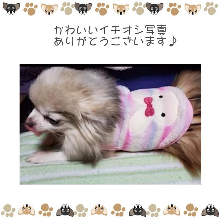 犬 服 犬服 犬の服 おしゃれ トイプードル チワワ タンクトップ カラフル ドッグウェア|k-city|10