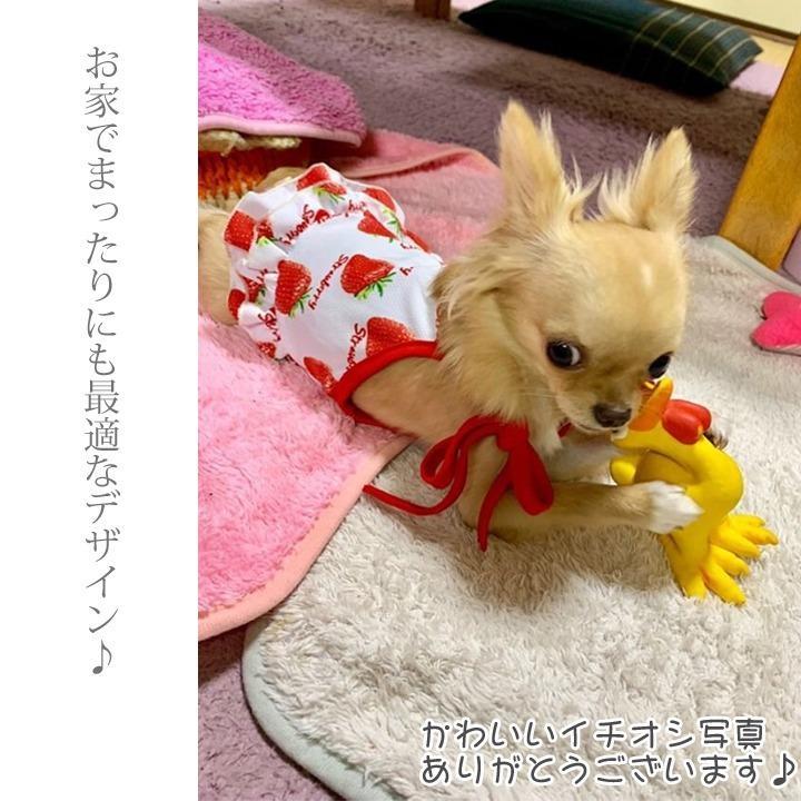 犬 服 春 春夏 犬服  犬の服 おしゃれ トイプードル チワワ タンクトップ キャミソール フルーツ柄 ソフトメッシュ ドッグウェア k-city 18