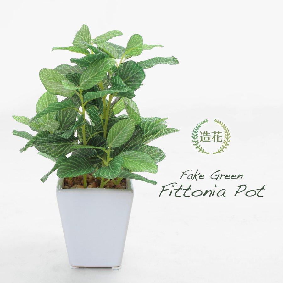 入手困難 フェイクグリーン ミニ 人工 観葉植物 低価格化 造花 フィットニア CT触媒 おしゃれ リアル インテリア 光触媒 19cm
