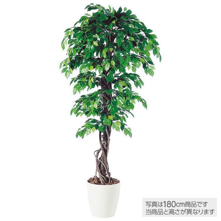 人工観葉植物 フィッカスベンジャミナリアナ (ベンジャミン) 150cm 鉢植 大型 フェイクグリーン 観葉植物 造花 光触媒 CT触媒 インテリア