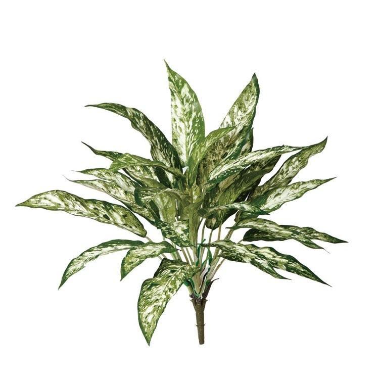 観葉植物 いよいよ人気ブランド 造花 アグラオネマ 40cm 本店 フェイクグリーン CT触媒 人工観葉植物 光触媒 インテリア