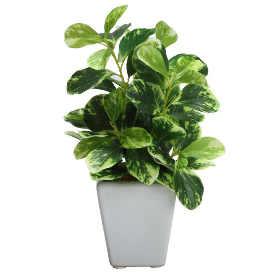 フェイクグリーン 推奨 人工 観葉植物 造花 光触媒 ミニ ロマンスの観葉 アルテシマminiポット フェイク おしゃれ グリーン 人気 陶器鉢 CT触媒 インテリア お祝い