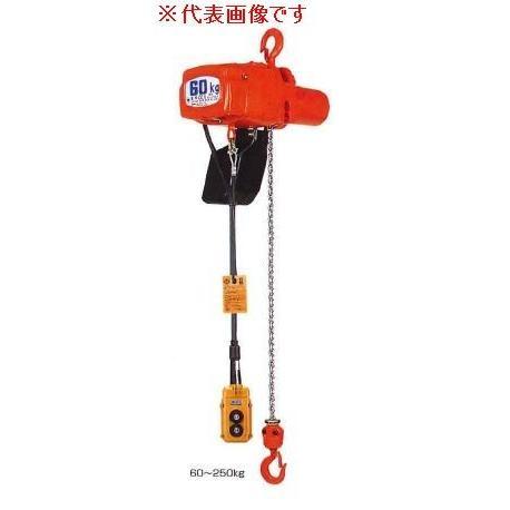 象印チェンブロック αアルファ 2点押しボタン電気チェーンブロック(懸垂式・フック型) 二速型 100〜110V用 揚程6m  60kg αsB-006