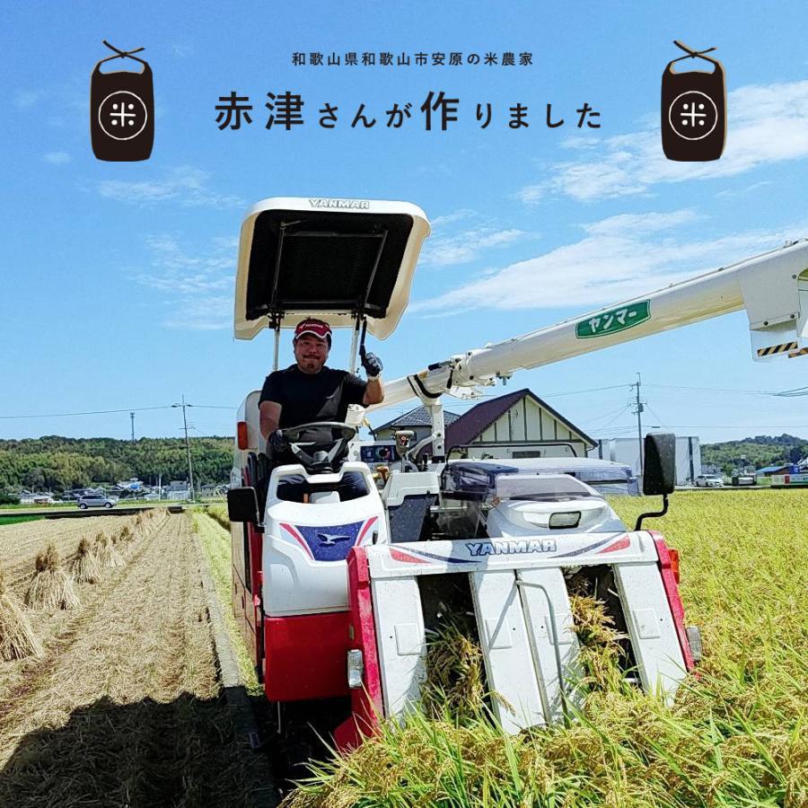 米 お試し 送料無料 和歌山県産 赤津直基さんのキヌヒカリ 150g メール便 ポイント消化 k-yorozuya 06