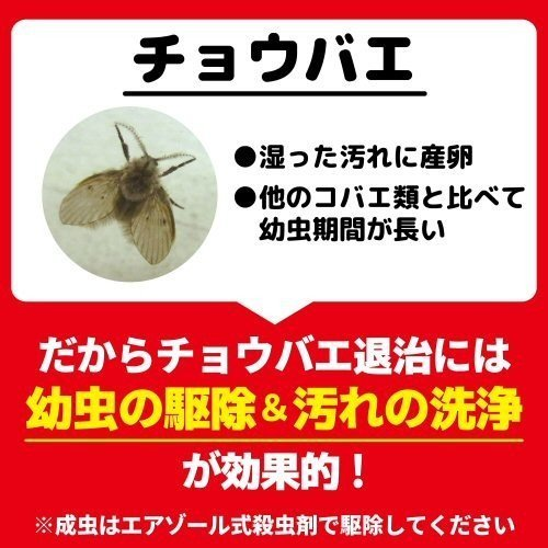 チョウバエ コバエ 駆除 業務用チョウバエバスター 25g×10袋 排水口 洗浄除菌|ka-dotcom|11
