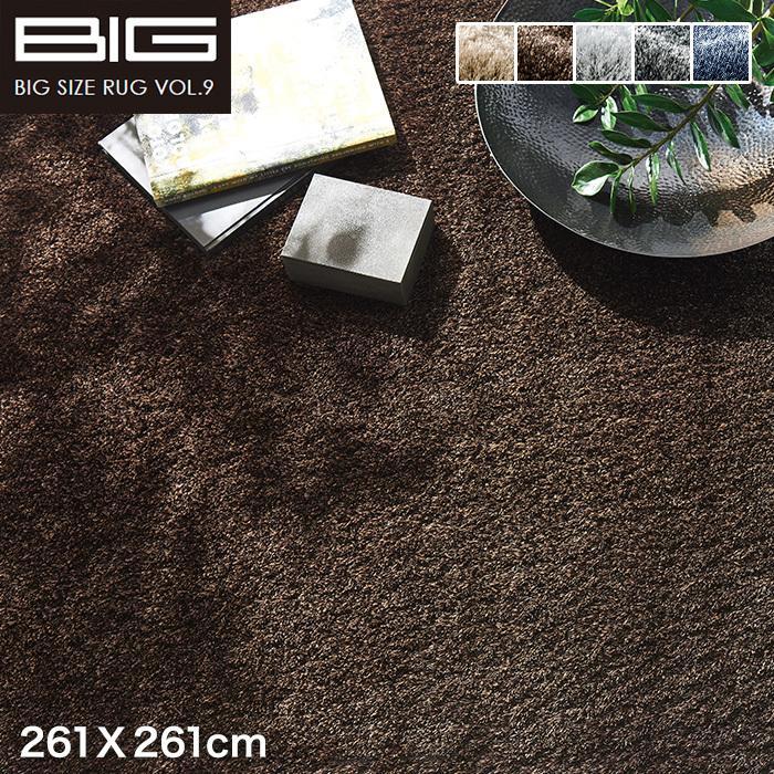 ラグカーペット スミノエ BIG ネオグラス 261×261cm*NGL2/NGL10__cp13127373-4-