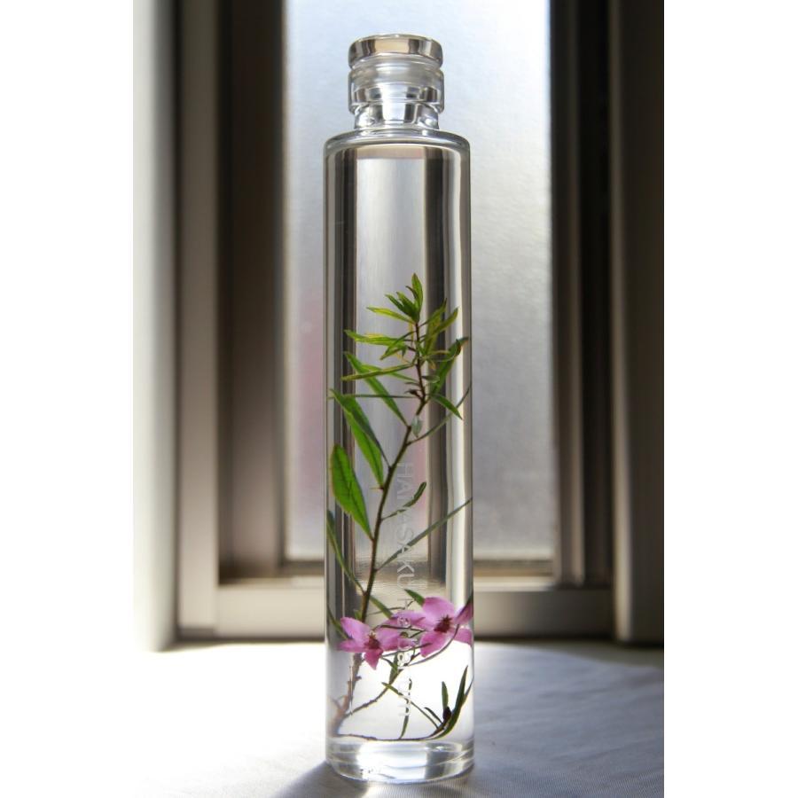 サザンクロス 花咲くハーバリウム kagoen-nursery