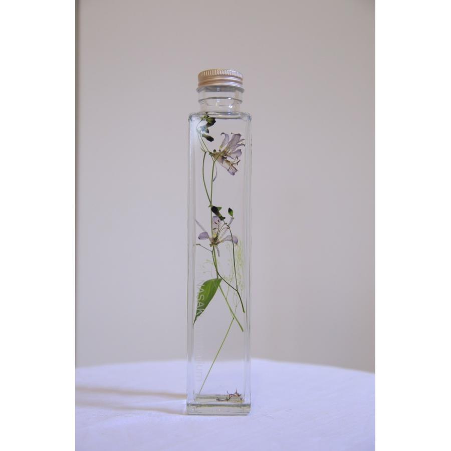 ホトトギス 花咲くハーバリウム|kagoen-nursery