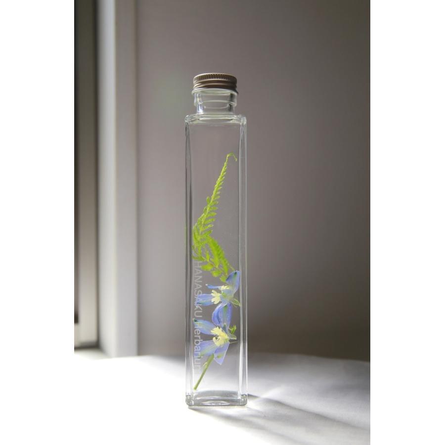 デルフィニウム 花咲くハーバリウム|kagoen-nursery