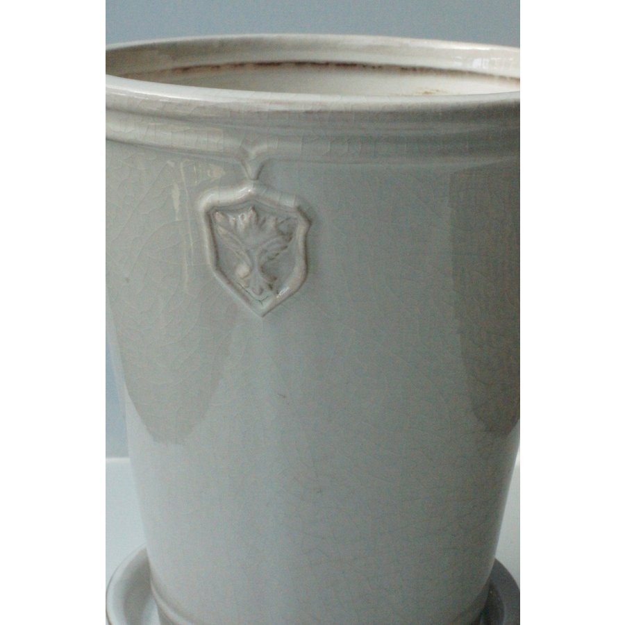 Rose  de Noel Parfaite 7号Lサイズ 花、ガーデニング 園芸用品 鉢、プランター 庭、ガーデニング 鉢、プランターカバー (4054) kagoen-nursery
