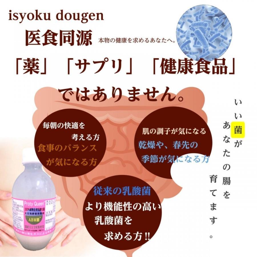 乳酸菌 ABMプロティクイーン 1本 植物由来乳酸菌 BBM 整腸 アミノ酸  大豆 健康|kaidou308|02