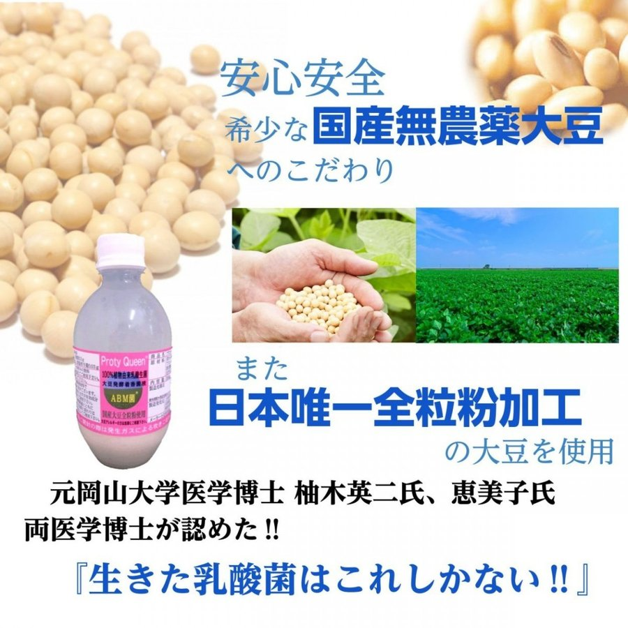 乳酸菌 ABMプロティクイーン 1本 植物由来乳酸菌 BBM 整腸 アミノ酸  大豆 健康|kaidou308|03
