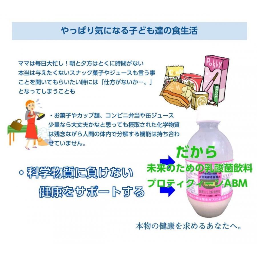 乳酸菌 ABMプロティクイーン 1本 植物由来乳酸菌 BBM 整腸 アミノ酸  大豆 健康|kaidou308|04