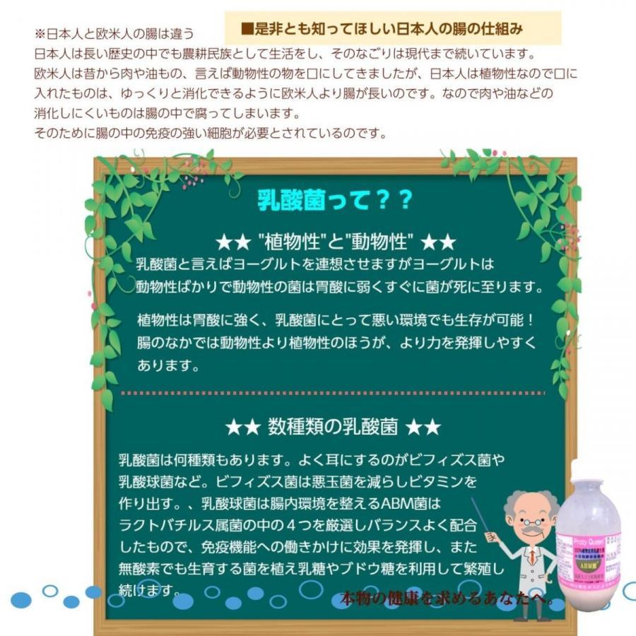 乳酸菌 ABMプロティクイーン 1本 植物由来乳酸菌 BBM 整腸 アミノ酸  大豆 健康|kaidou308|05