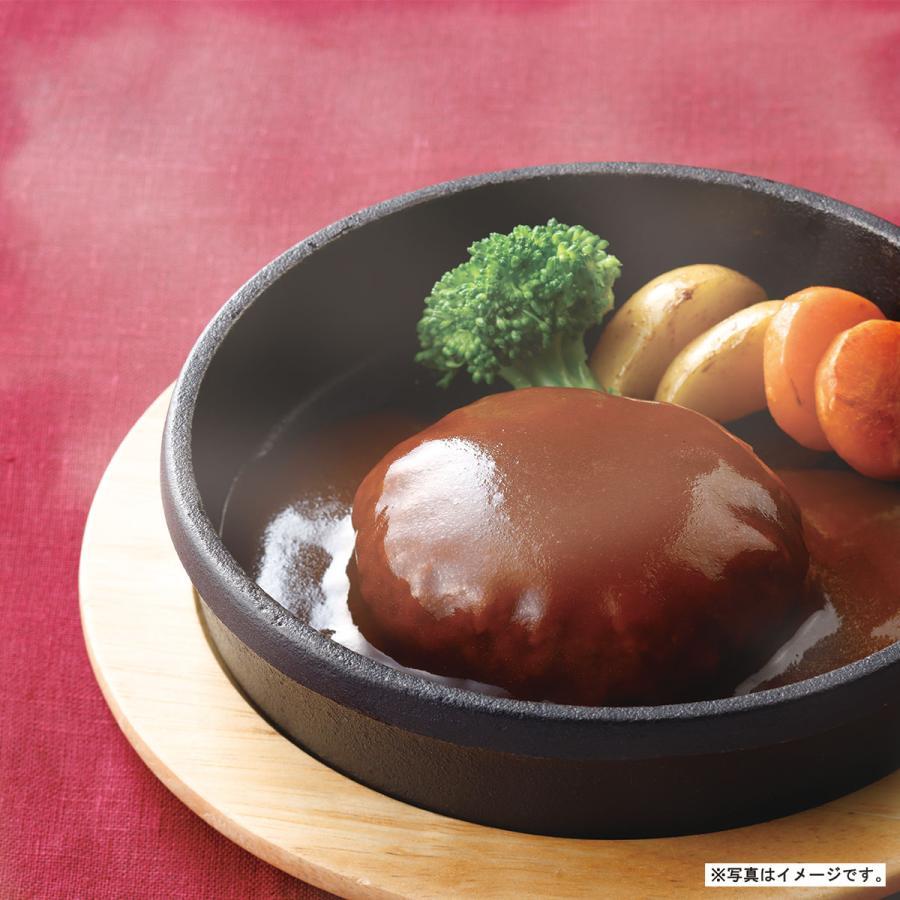 煮込み ハンバーグ デミグラスソース 1人前 190g 神戸開花亭 レトルト ポイント消化 のし・包装不可|kaikatei
