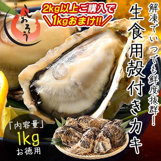 カキ 開催中 牡蠣 かき 生食用 10個前後 冷凍 殻付き 超特価SALE開催 1kg