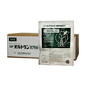 GFオルトランカプセル [0.6g×25個入]×4袋 【お買い得ケース購入・送料無料】