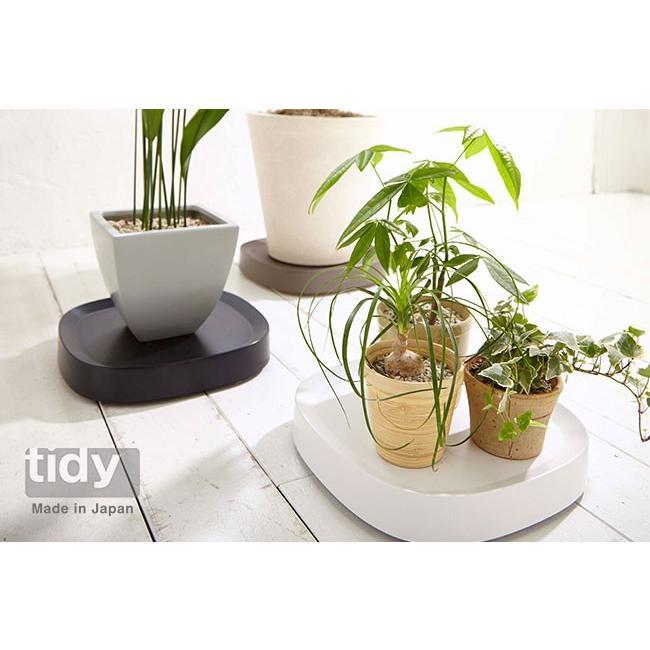 tidy プランタブル 植木鉢トレー 観葉植物 ティディ tidy テラモト グリーン 植物植物 キャスター付|kajitano|02
