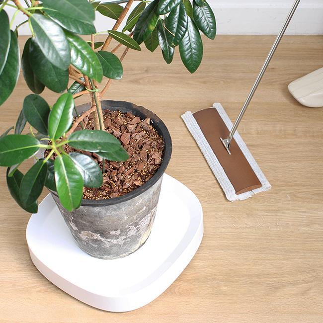 tidy プランタブル 植木鉢トレー 観葉植物 ティディ tidy テラモト グリーン 植物植物 キャスター付|kajitano|06