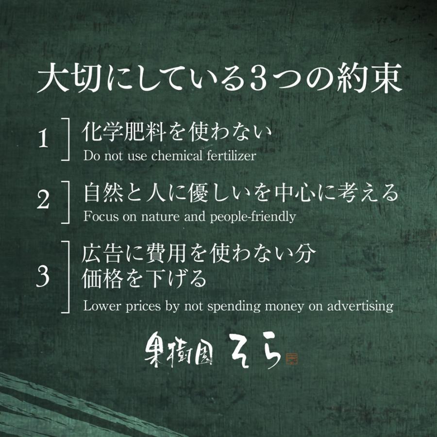 そら清見【ご予約/愛媛産みかん/訳あり】4kg kajuensora 06